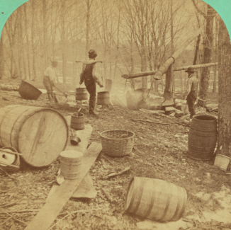 Maple_sugar_making._Boiling_the_sap,_by_Vermont_Stereoscopic_Company